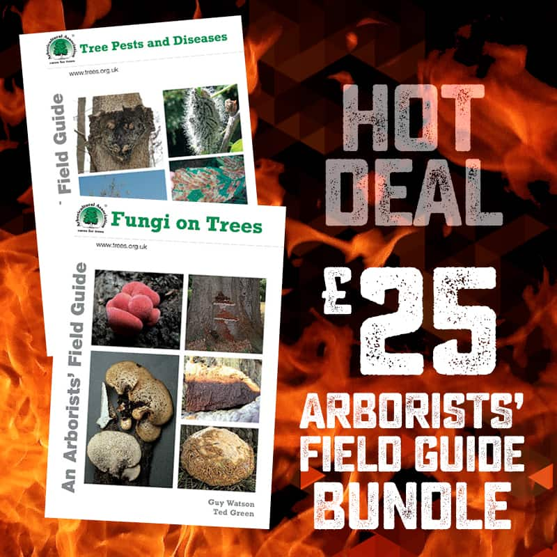Field Guide Bundle