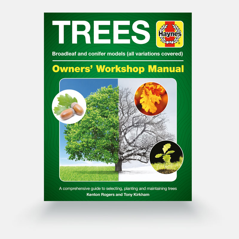 Haynes Tree Owners' Workshop Manual