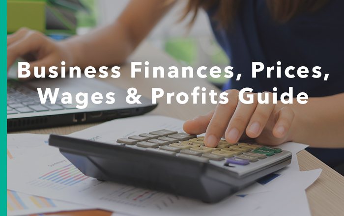 Business Finances, Prices, Wages and Profits Guide